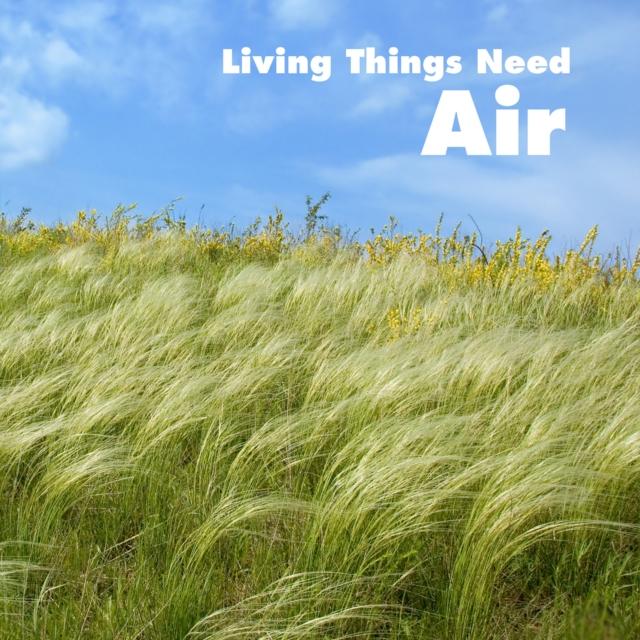 Living Things Need Air