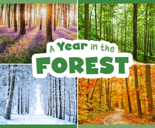 Year in the Forest