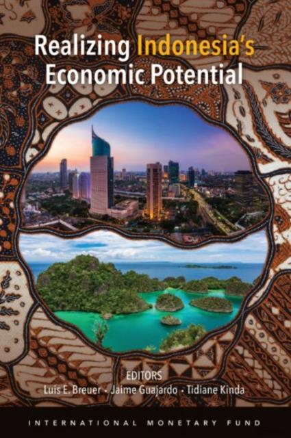 Realizing Indonesia's economic potential