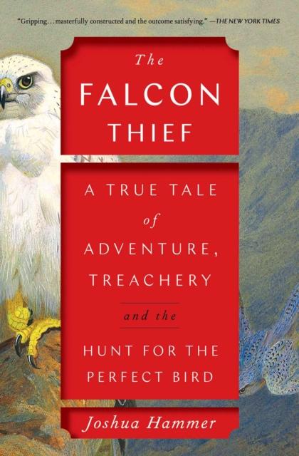 Falcon Thief