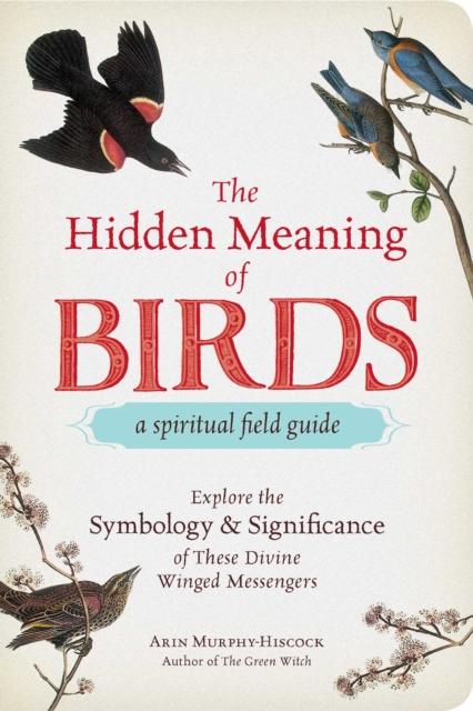 Hidden Meaning of Birds--A Spiritual Field Guide