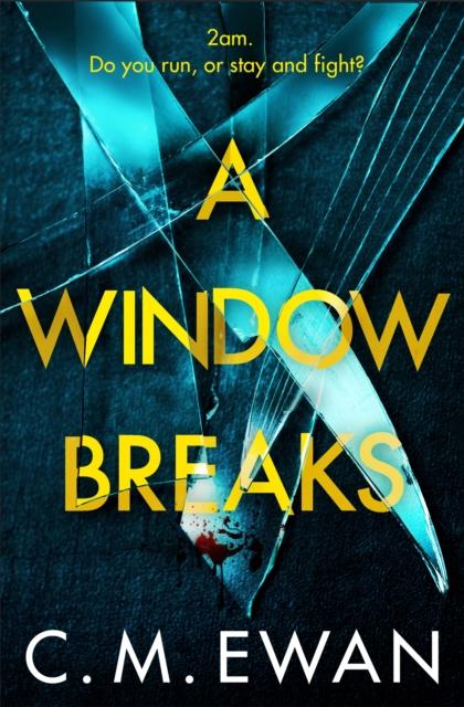 Window Breaks