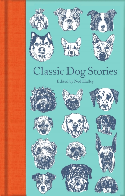 Classic Dog Stories (Macmillan Collector's Library)