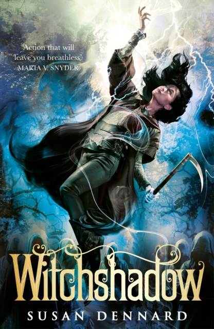 Witchshadow (The Witchlands Series Book 4)