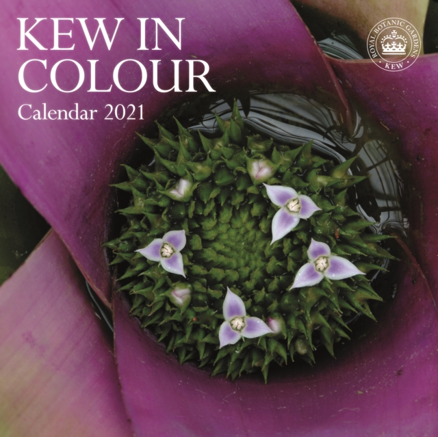 Royal Botanic Gardens Kew, Kew in Colour Square Wall Calendar 2021