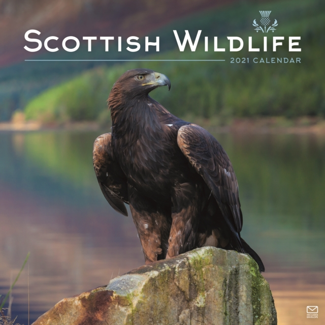 Scottish Wildlife Square Wall Calendar 2021