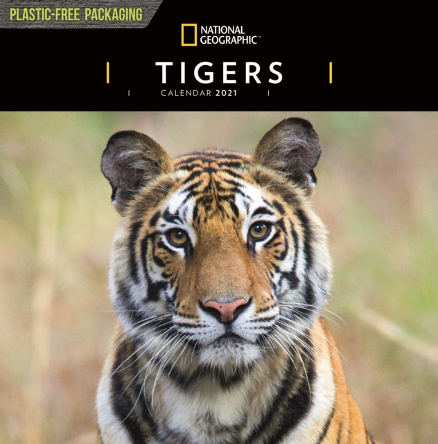 Tigers National Geographic Square Wall Calendar 2021