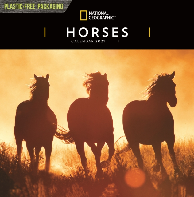 Horses National Geographic Square Wall Calendar 2021