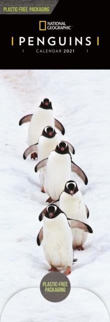 Penguins National Geographic Slim Calendar 2021