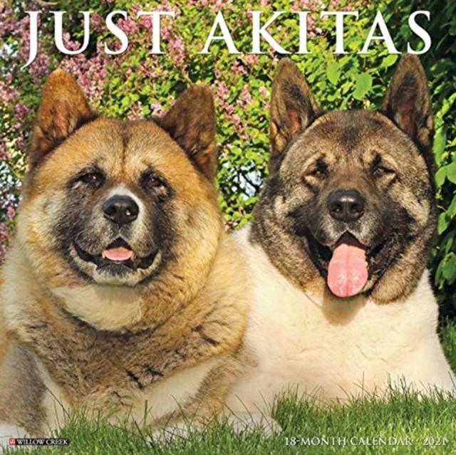 Just Akitas 2021 Wall Calendar (Dog Breed Calendar)