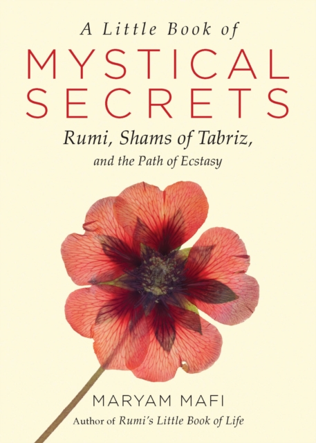 Little Book of Mystical Secrets