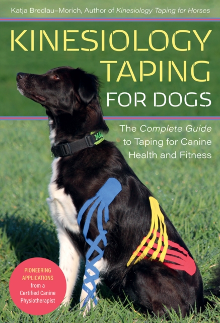 Kinesiology Taping for Dogs