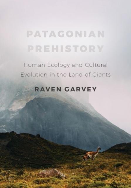 Patagonian Prehistory
