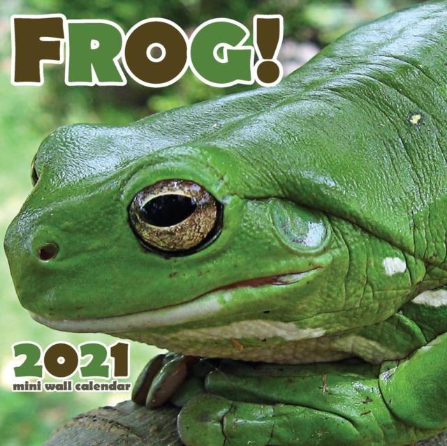 Frog! 2021 Mini Wall Calendar