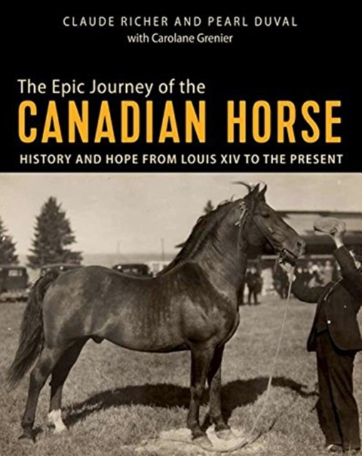 Epic Journey of the Canadian Horse