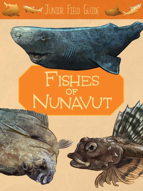 Junior Field Guide: Fishes of Nunavut