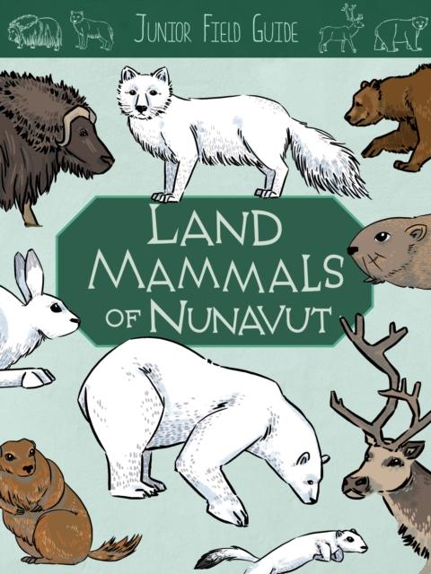 Junior Field Guide: Land Mammals
