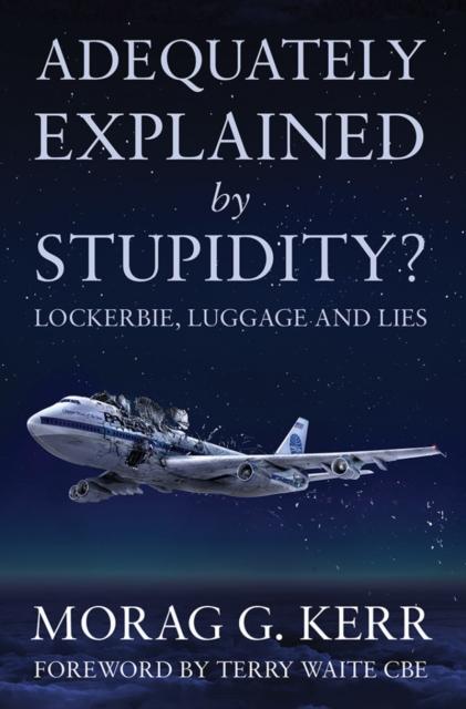 Adequately Explained by Stupidity?