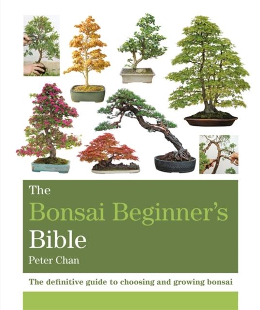 Bonsai Beginner's Bible