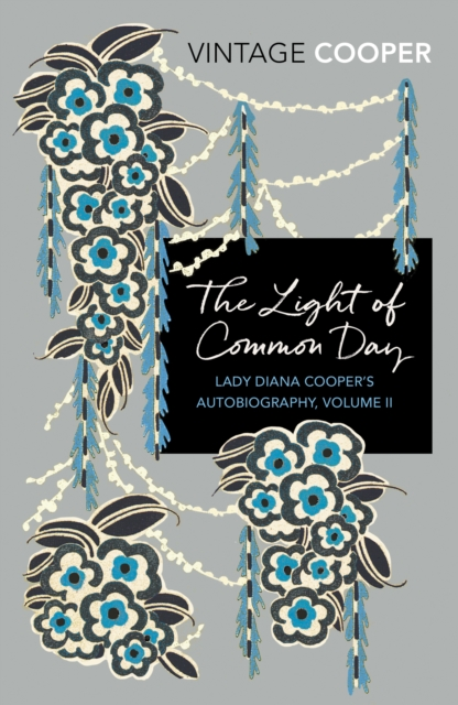 The Light of Common Day (Vintage Classics)