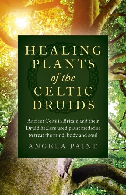 Healing Plants of the Celtic Druids