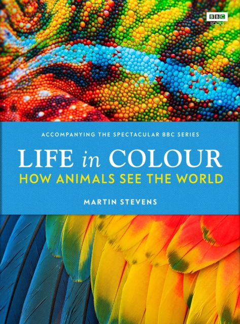Life in Colour