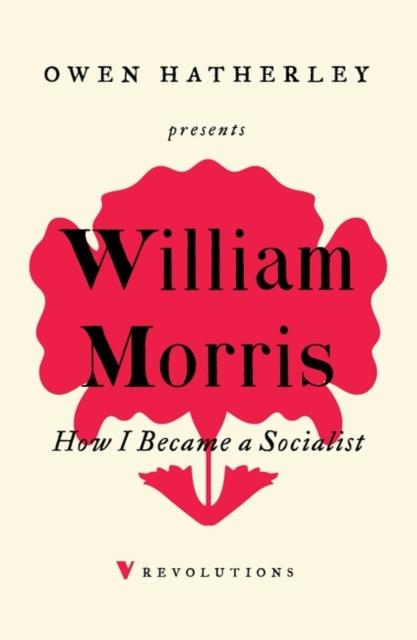 How I Became A Socialist