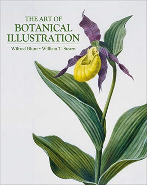 Art of Botanical Illustration