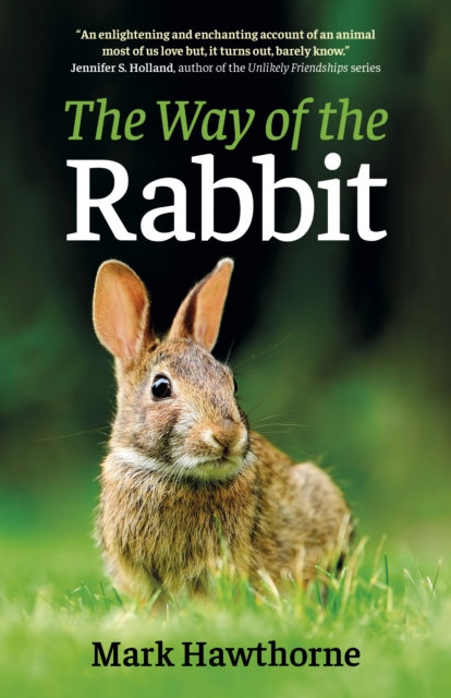 Way of the Rabbit, The