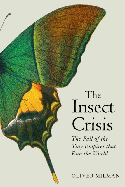 Insect Crisis