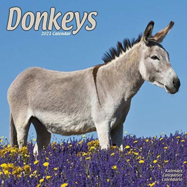 Donkeys 2021 Wall Calendar