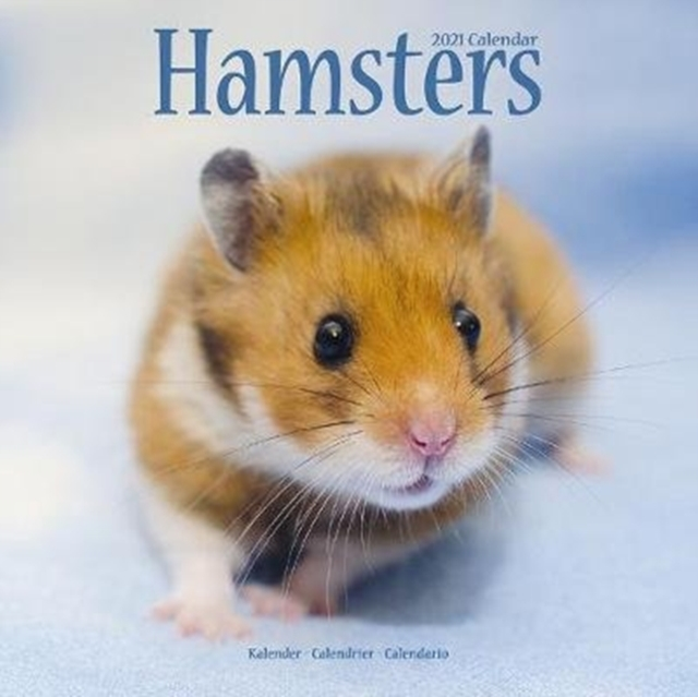 Hamsters 2021 Wall Calendar