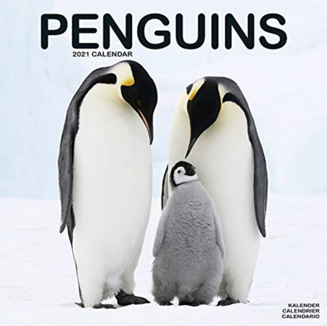Penguins 2021 Wall Calendar