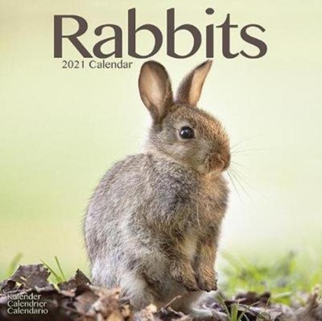 Rabbits 2021 Wall Calendar