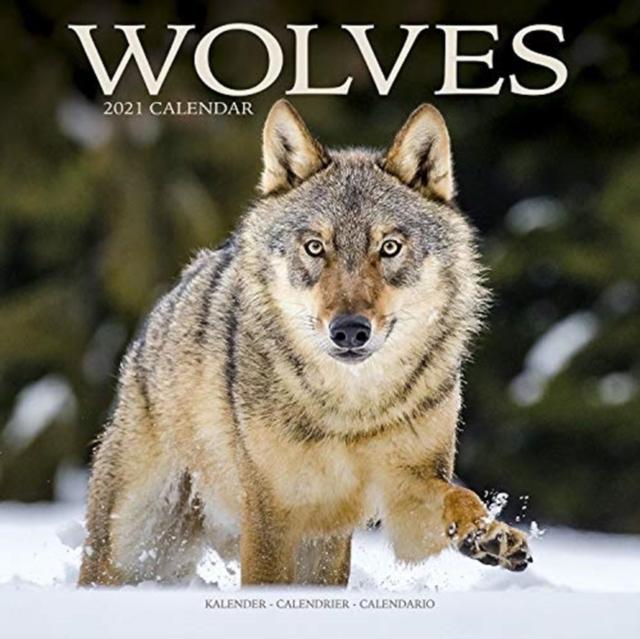 Wolves 2021 Calendar
