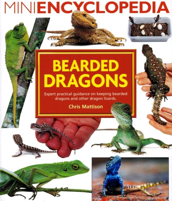 Mini Encyclopedia of Bearded Dragons