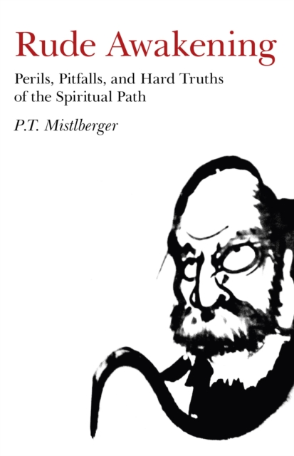 Rude Awakening - Perils, Pitfalls, and Hard Truths of the Spiritual Path