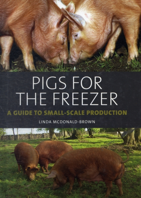 Pigs for the Freezer
