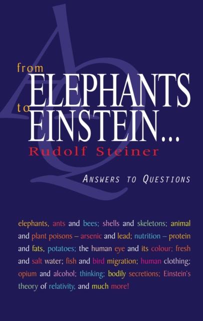 From Elephants to Einstein