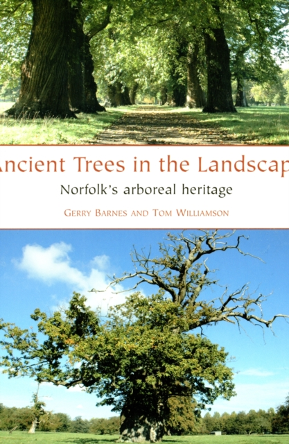 Ancient Trees in the Landscape