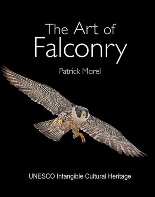 Art of Falconry