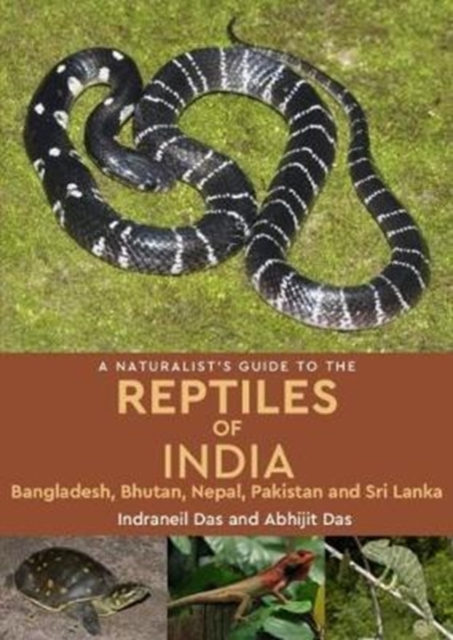 Naturalist's Guide to the Reptiles of India
