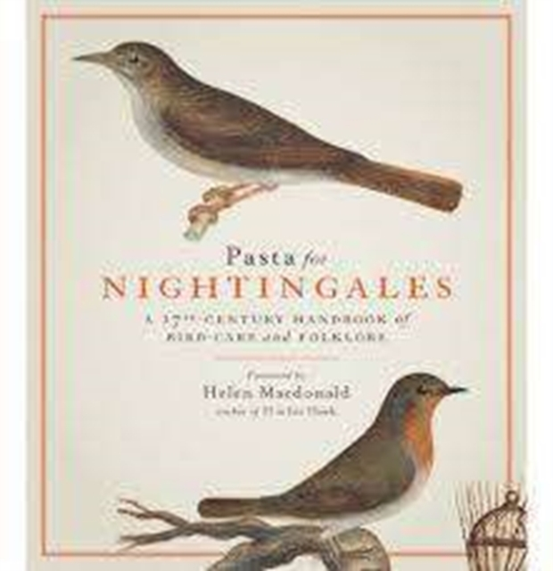 Pasta For Nightingales