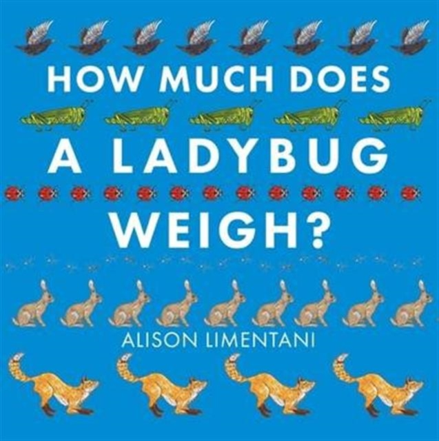 How Much Does a Ladybird Weigh?
