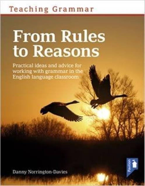 Teaching Grammar from Rules to Reasons