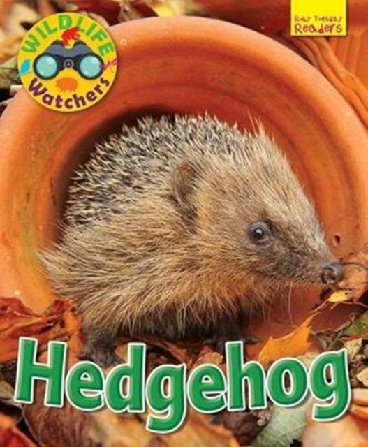 Wildlife Watchers: Hedgehog