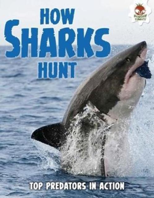 Shark! How Sharks Hunt