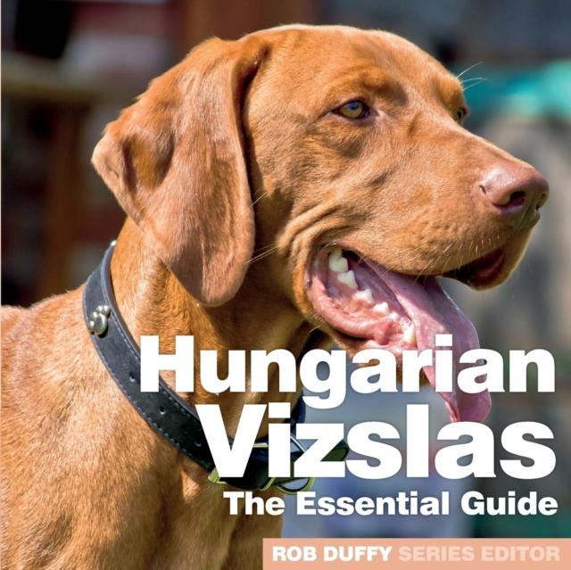 Hungarian Vizslas