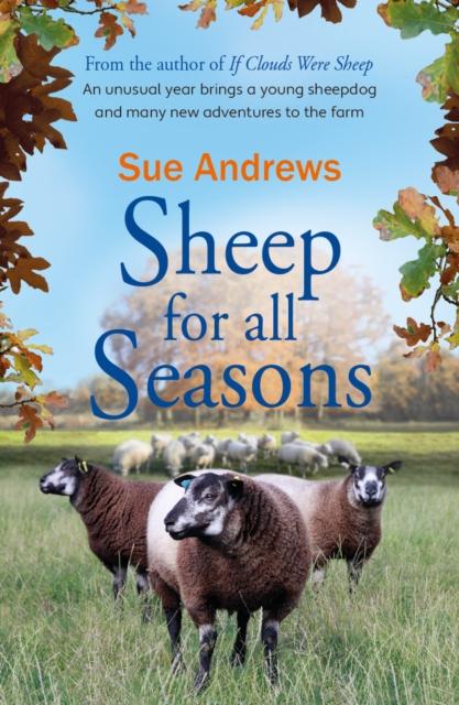 Sheep For All Seasons