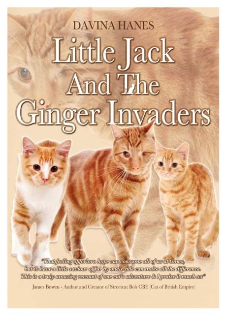 Little Jack & the Ginger Invaders